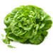 Organic Green Leaf Lettuce (Local)