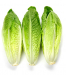 Romaine Hearts (3ct Package)